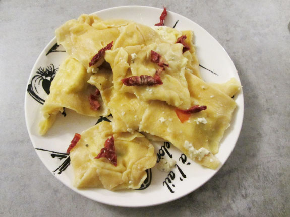 Raviolis cottage cheese